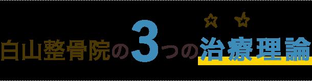 白山整骨院の3つの治療理論